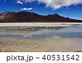ラグーナエディオンダ フラミンゴ 湖の写真 40531542