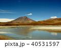ラグーナエディオンダ フラミンゴ 湖の写真 40531597