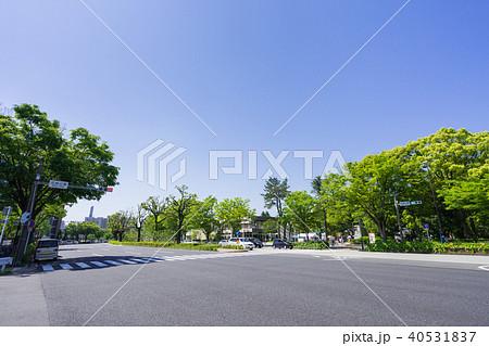 名古屋市北区都市風景 名城公園 交差点 40531837
