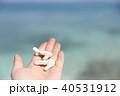 サンゴと海 40531912