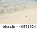 波打ち際のサンダル 40531924