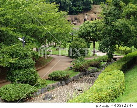 緑葉に覆われた遊歩道 40532247