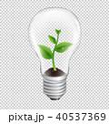 電球 球根 球のイラスト 40537369