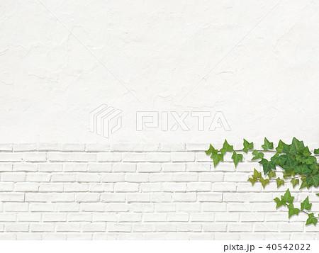 白壁-煉瓦-ツタ 40542022
