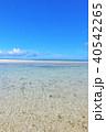 沖縄県 竹富島 青空と青い海 40542265