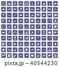 40544230