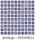 40544811