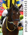 競馬 競走馬 馬の写真 40545443
