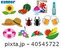 夏 夏のイメージ アイコンのイラスト 40545722