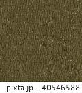 Wooden Bark. Seamless Tileable Texture. 40546588