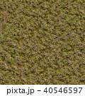 Grass with Moss. Seamless Texture. 40546597