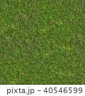 Green Grass. Seamless Tileable Texture. 40546599