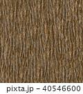 Wooden Bark. Seamless Tileable Texture. 40546600