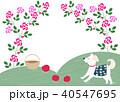 薔薇のアーチ 40547695