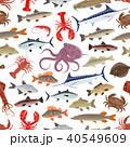 魚 シーフード 海の幸のイラスト 40549609