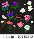 フラワー 花 ベクターのイラスト 40549812