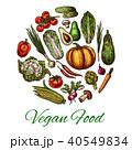 野菜 食 料理のイラスト 40549834