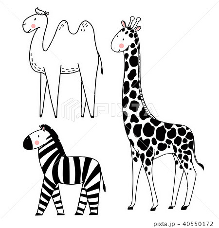 Safari animals vector set 40550172