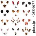 動物 かわいい 可愛いのイラスト 40554977