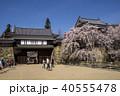 上田城 桜 東虎口櫓門の写真 40555478