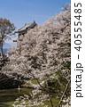 上田城 桜 北櫓の写真 40555485