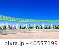 神奈川 港の見える丘公園(展望台より) 40557199