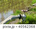 水田 農業用水 水道 蛇口 40562368