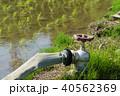 水田 農業用水 水道 蛇口 40562369