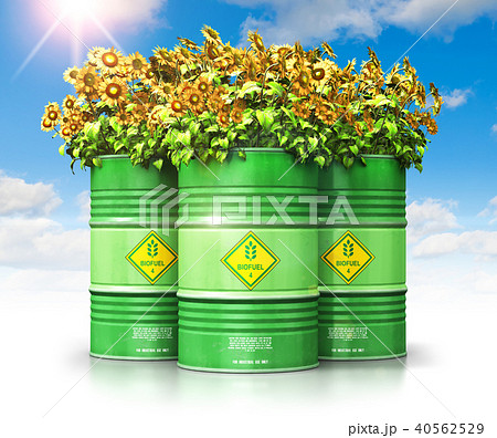 Group of green biofuel drums with sunflowers 40562529