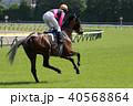 競馬 競走馬 馬の写真 40568864