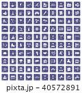 40572891