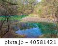 五色沼 風景 沼の写真 40581421