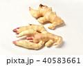 新生姜 40583661