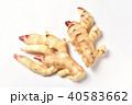 新生姜 40583662