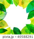葉っぱ フレーム 葉のイラスト 40588291