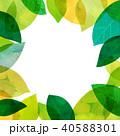 葉っぱ フレーム 葉のイラスト 40588301
