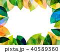 葉っぱ フレーム 葉のイラスト 40589360
