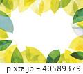 葉っぱ フレーム 葉のイラスト 40589379