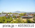 京都・秋の二条城 40590310