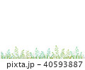 植物の背景 40593887