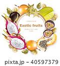 フルーツ 果実 果物のイラスト 40597379