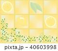 南欧風タイルと葉っぱ 40603998
