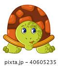 かめ カメ 亀のイラスト 40605235