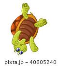 かめ カメ 亀のイラスト 40605240