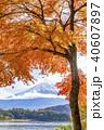 富士山 紅葉 秋の写真 40607897