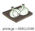 にんにく 野菜 ガーリックのイラスト 40611546