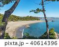 桂浜 風景 海の写真 40614396