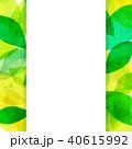 背景素材 葉っぱ フレームのイラスト 40615992