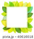 背景素材 葉っぱ フレームのイラスト 40616018