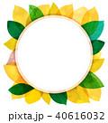 葉っぱ フレーム 葉のイラスト 40616032